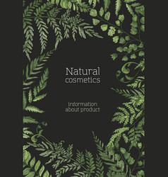Flyer or poster template with ferns wild herbs vector