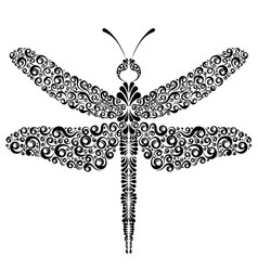 Graphic dragonfly tattoo vector