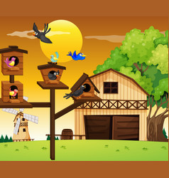 Many birds living in birdhouse vector