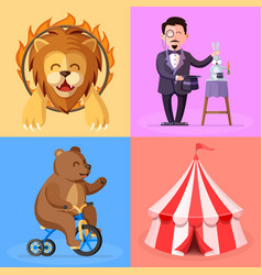 Trained lion magician bear on bicycle vector