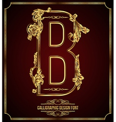 Calligraphic font Letter B vector image
