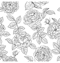 doodle rose seamless vector image vector image