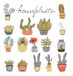 Cute hand drawn collection of house plants vector image