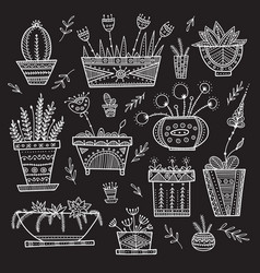 Flower pots and house plants set vector