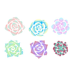Set simple neon succulents with glare view vector