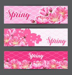 Spring banners with sakura or cherry blossom vector