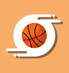 basketball ball sport recreation equipment vector image