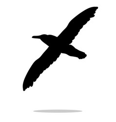 Gull bird black silhouette anima vector