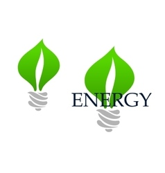 Light bulb abstract icon with green leaves vector image vector image