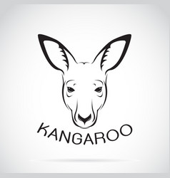kangaroo head on white background wild animals vector image vector image