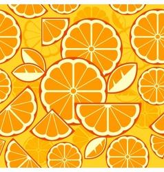 Citrus Fruit Slices background vector image