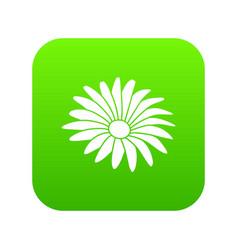 Gerber flower icon green vector