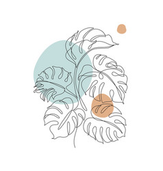 Monstera contour drawing minimal art leaves on vector