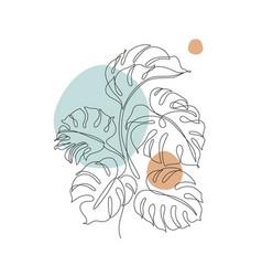 monstera contour drawing minimal art leaves vector image