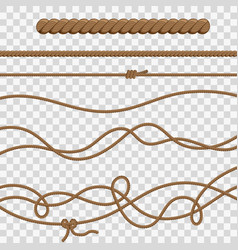 ropes and knots vector image