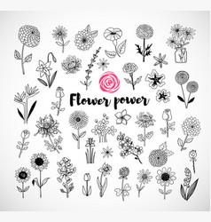 set doodle sketch flowers on white background vector image