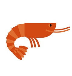 Shrimp Marine cancroid Boiled shrimp delicacy vector