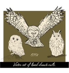 Set of isolated hand-drawn owls 1 vector image vector image