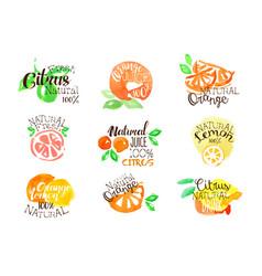 Fesh citrus juice promo signs colorful set vector