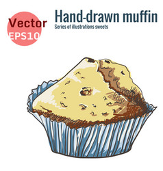 Hand-drawn muffin isolated on a white background vector