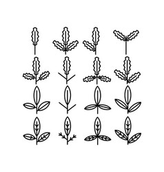 Leaf and leaves icon collection vol 3 line thin vector