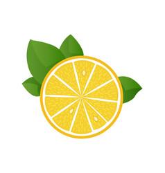 lemon slice on white vector image