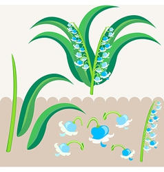 Lily of the valley scrapbooking elements vector