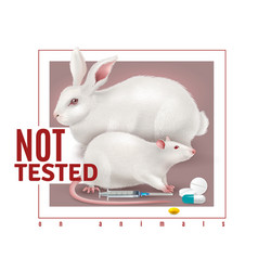 not tested on animals realistic background vector image