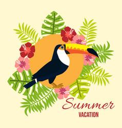 summer card with tropical bird toucan vector image