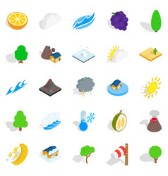 Tropical nature icons set isometric style vector