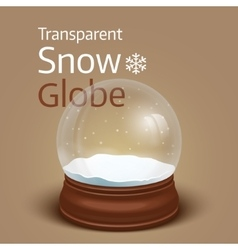 Christmas transparent snow globe vector image