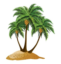 Cartoon island with palms vector image vector image