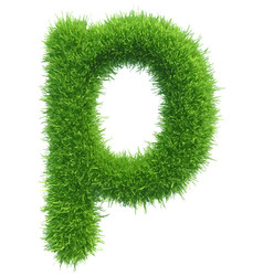 small grass letter p on white background vector image vector image