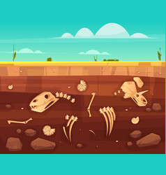 Dinosaurs skeletons bones in soil layers vector