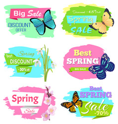 discount offer super choice big spring sale prices vector image