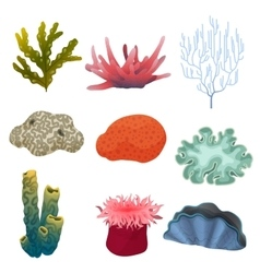 Different kind of cartoon underwater plants and vector image