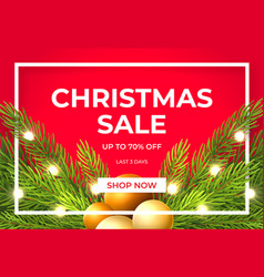 christmas sale design with pine tree branches vector image