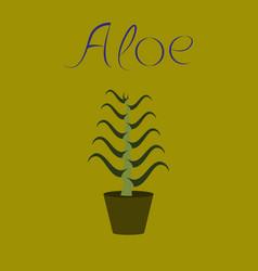 flat stylish background plant aloe vector image