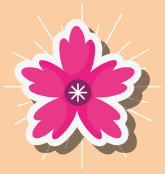 flower nature decoration ornament vector image