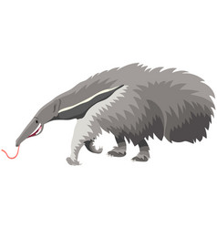 giant anteater animal cartoon vector image