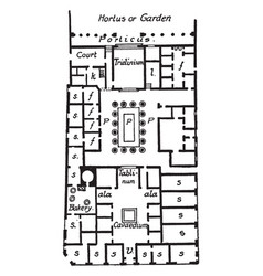 House of pansa pompeii plan vintage engraving vector
