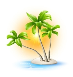 Island with palm trees vector