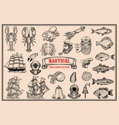 big set of design elements for nautical emblems vector image