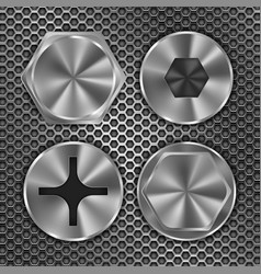 screw heads on metal perforated background vector image