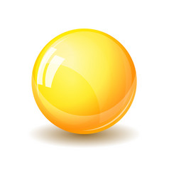 Glass sphere realistic vector