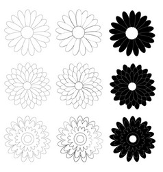 black and white daisy flower on white background vector image