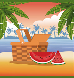 Beach and summer vector