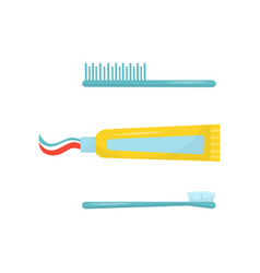 blue plastic hair comb toothbrush and yellow tube vector image