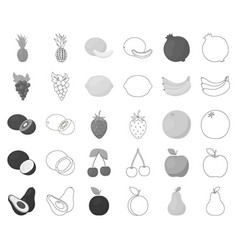 Different fruits monochromeoutline icons in set vector