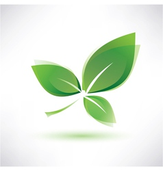 green leaf eco concept vector image
